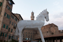 ITA0129 o.T. (Siena/Italien 2012)