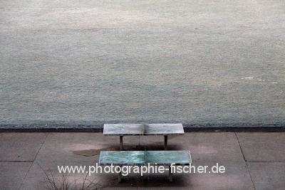 DD0204: o.T. (Im Alaunpark/Dresden 2014)