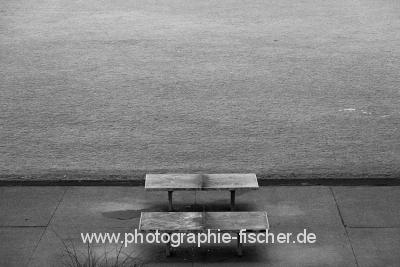 DD0204sw: o.T. (Im Alaunpark/Dresden 2014)