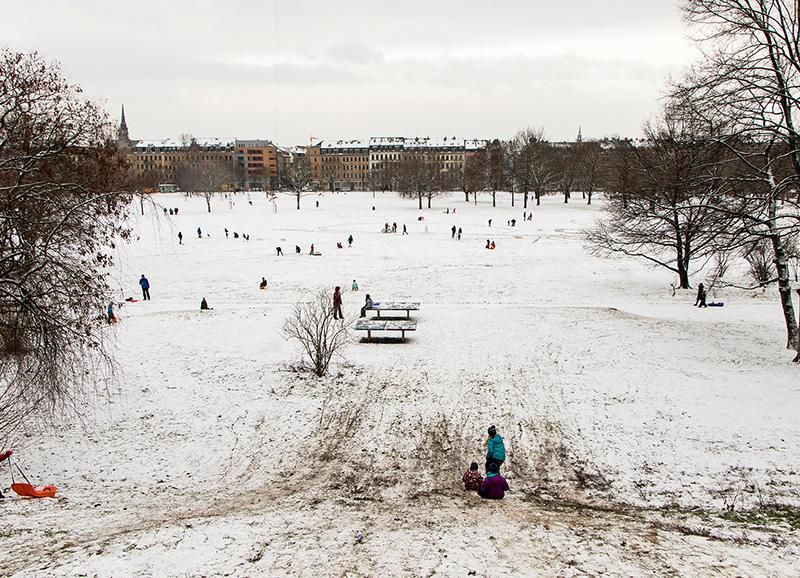 DD0389 Lieber schmuddeliges Wintervergnügen als gar keins (Dresden Äußere Neustadt 2019)