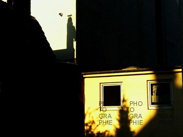 0103: o.T. (Hamburg 2009)