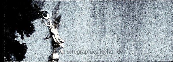 0280b: o.T. (oder Engel im Regen; Dresden, 2009)