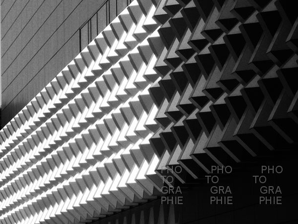 0334: o.T. (Centrumgalerie Dresden 2009)