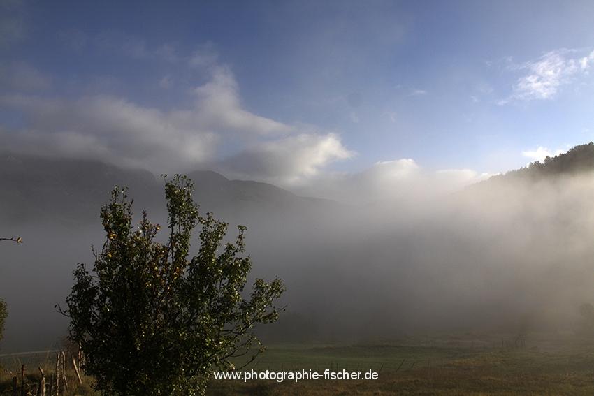 0631 Morgennebel in den Abruzzen (Italien 2012)