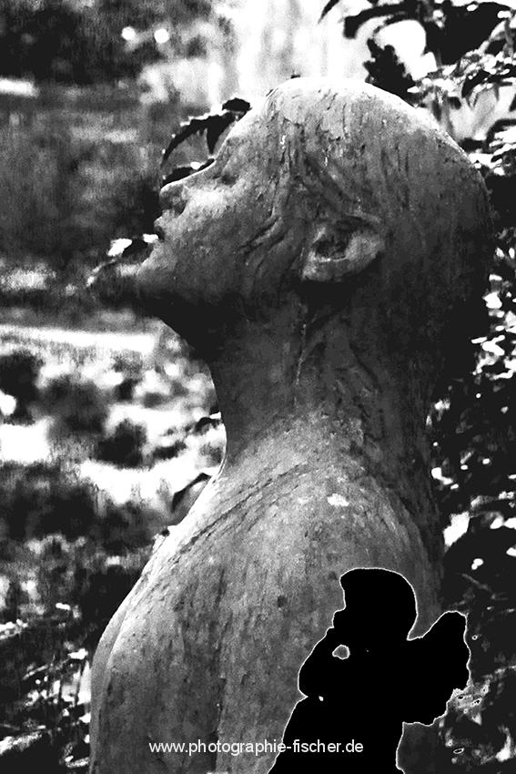 1100: o.T. ( Dresden, Friedhof Loschwitz; 2014)