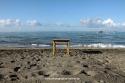 0604: Strandstillleben II (Italien 2012/14)