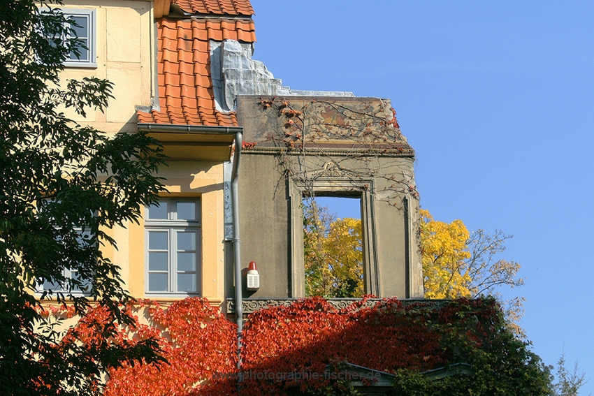 PK0028: o.T. (Braunschweig 2008)