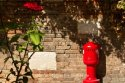 PK0645: o.T. (Venedig 2012/14)