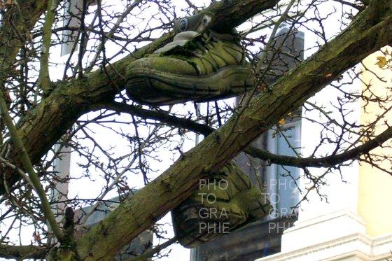 PK0493: Nachwachsende Rohstoffe (Hamburg 2008)