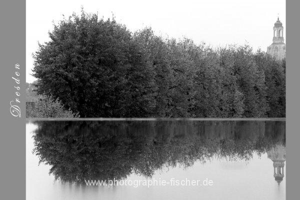 PK0661: o.T. (Dresden 2009/13)