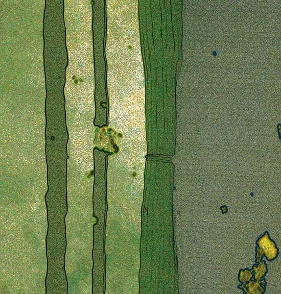 PK0167a: o.T. (Brandt 2009)