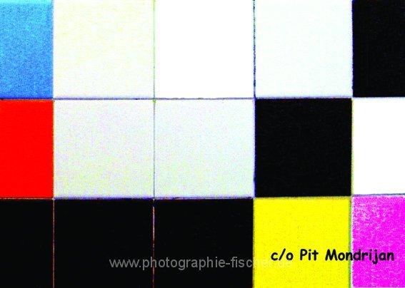 PK0503: c/o Pit Mondrijan (Guggenheim Museum, Herren WC, Bilbao 2009)