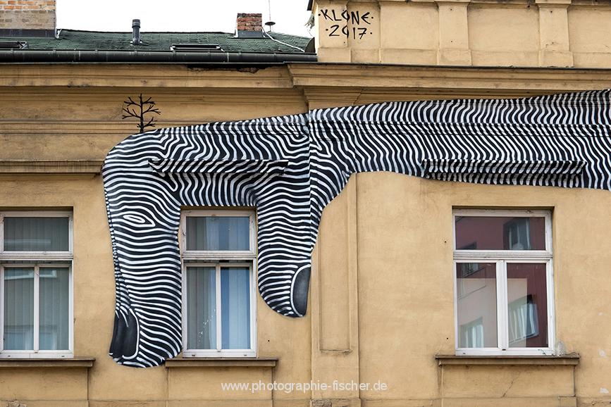 CZE0025 o.T. (Prag, Tschechien 2018)