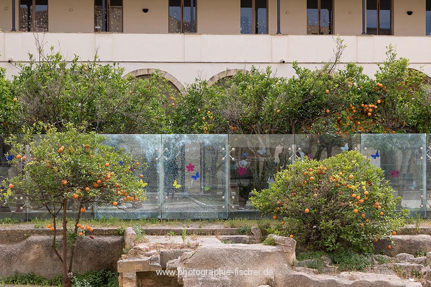 ITA_6016: o.T. (Marsala, Westsizilien, Italien 2019)