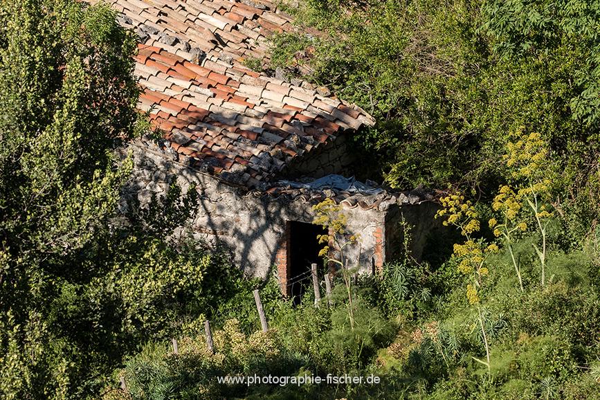 ITA_6086: o.T. (San Fratello, Nordostsizilien, Italien 2019)